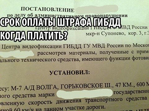 срок оплаты штрафа ГИБДД