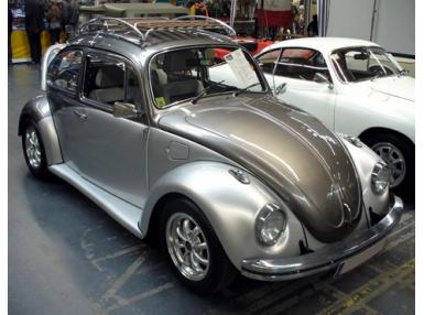 Volkswagen Beetle/Kaefer
